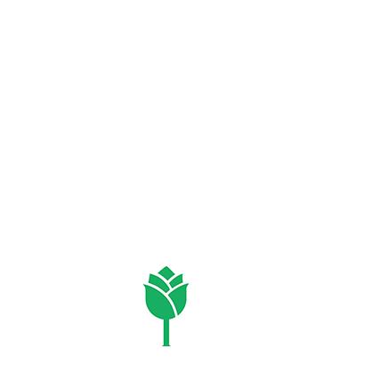 Name That Rose