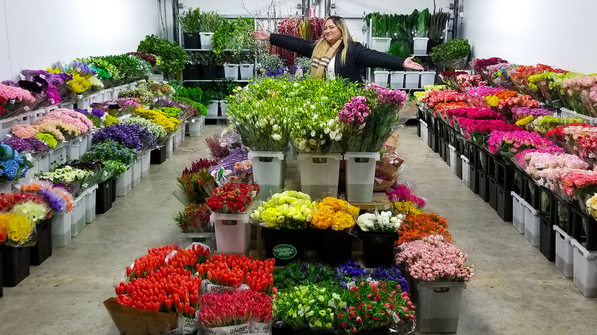 Home jet fresh flower distributors wholesale flower distributor jet fresh cash carry wholesale flowers izmirmasajfo