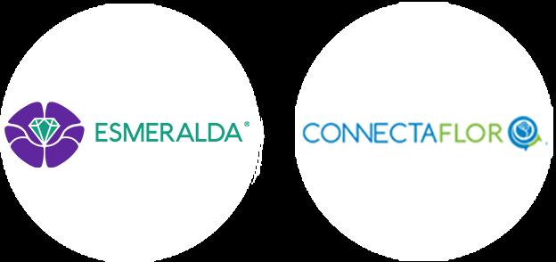 Esmeralda and Connectaflor